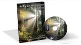 Walking in the Footsteps of Christ - Tim Jones (MP3)
